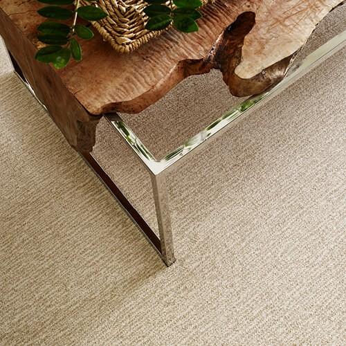 NEW WAVE WINDSWEPT | Boyle's Floor & Window Design