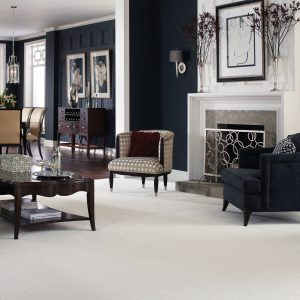 Carpet Flooring in Living room | Boyle's Floor & Window Design