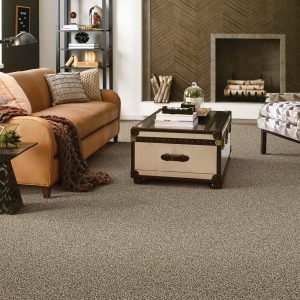 Ensemble Capuccino Carpet Flooring | Boyle's Floor & Window Design