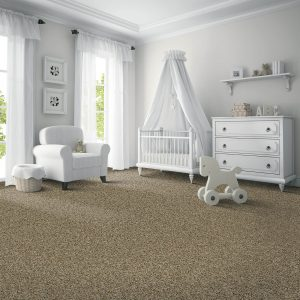 Exquisite Carpet Flooring | Boyle's Floor & Window Design