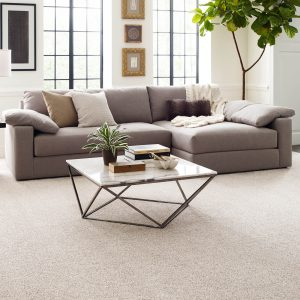 Living Room with carpet Flooring | Boyle's Floor & Window Design