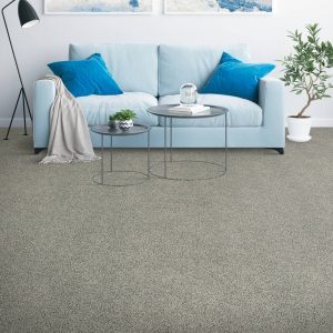 Placid Reflection Carpet flooring | Boyle's Floor & Window Design
