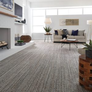 Sundance - Jura Grey Carpet flooring | Boyle's Floor & Window Design