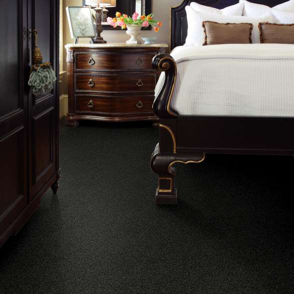 Find Your Best Carpet Color